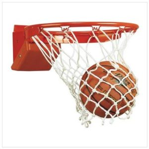 Bison Elite Breakaway Rim Basketball Goal ATCO12661