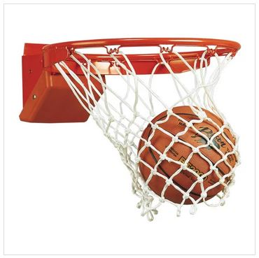 Bison Elite Breakaway Rim Basketball Goal ATCO12661